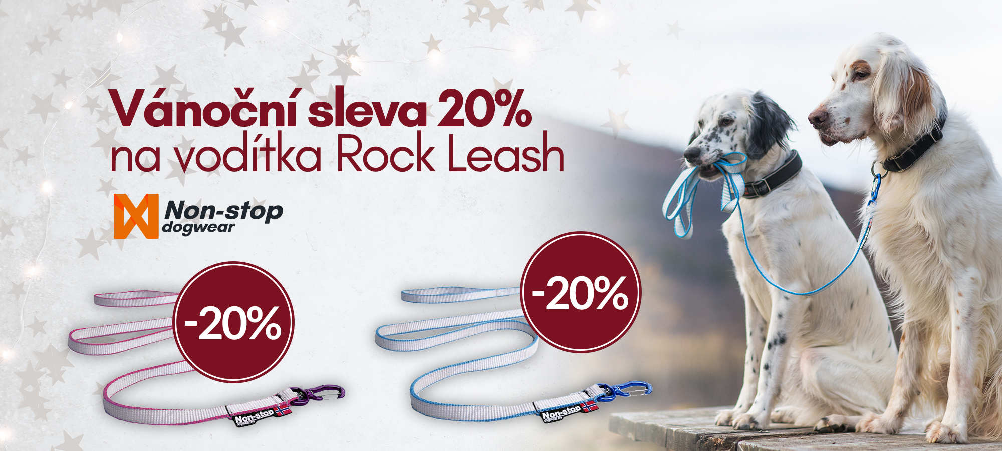 rock leash voditko non-stop